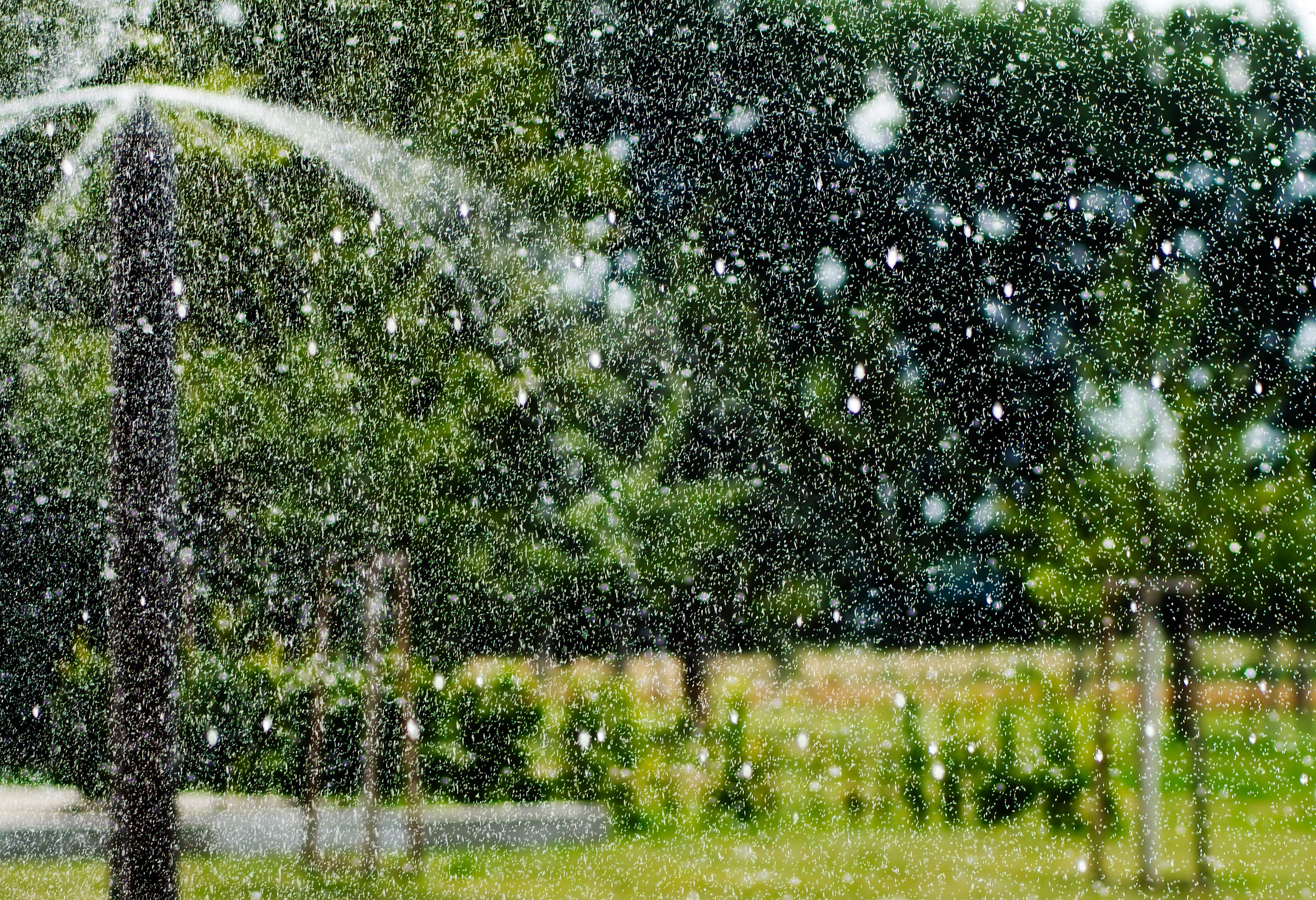 Water sprinkler in Maxau